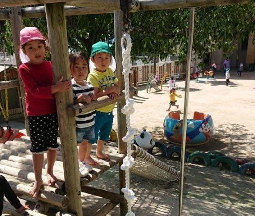 幼稚園の登り綱